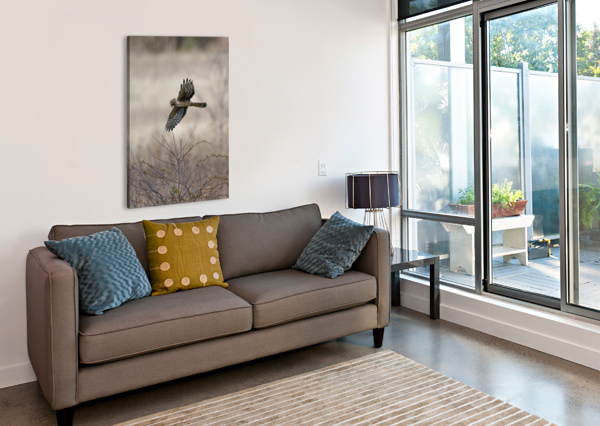 WESLEY ALLEN SHAW 02112 WESLEY ALLEN SHAW  Canvas Print