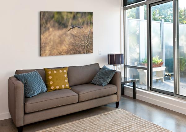 WESLEY ALLEN SHAW 08787 WESLEY ALLEN SHAW  Canvas Print
