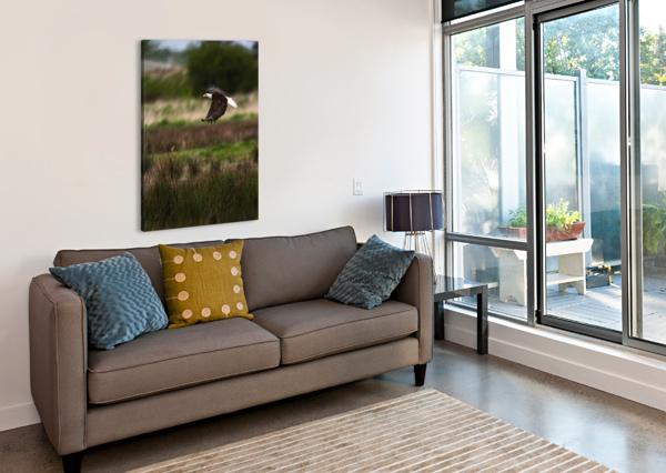 WESLEY ALLEN SHAW 04650 WESLEY ALLEN SHAW  Canvas Print