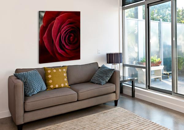 20181209 IMG 2798 1610470253.4238 JODI WEBBER  Canvas Print