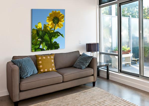 SUMMER SKY FLOWERS 8 AUG 2020 JAEDA DEWALT  Canvas Print
