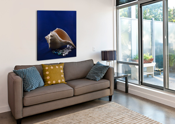 SINGLE CONCH SHELL WITH COLORED GLASS  JACQUELINE SLETER  Canvas Print