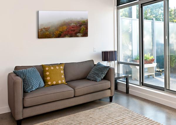 HURRICANE DELTA APMI 1800 ARTISTIC PHOTOGRAPHY  Canvas Print