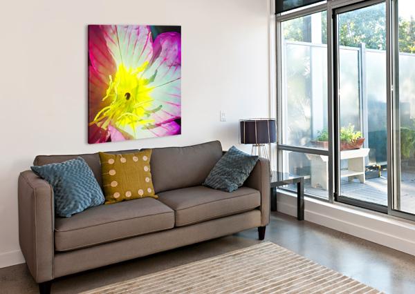 FLOWER CLOSE UP PIERCE ANDERSON  Canvas Print