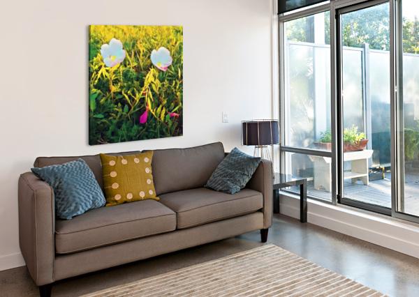 SPRING FLOWERS PIERCE ANDERSON  Canvas Print