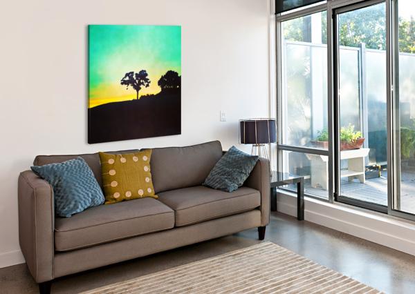 HILL TREE PIERCE ANDERSON  Canvas Print
