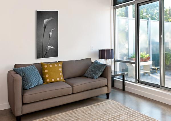 ETUDE ZEN 8 C DANIEL THIBAULT ARTISTE-PHOTOGRAPHE  Canvas Print