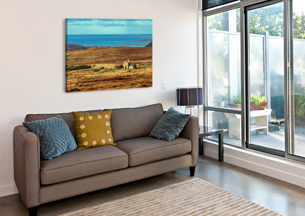 DONEGAL 12 ERIC FRANKS PHOTOGRAPHY  Canvas Print