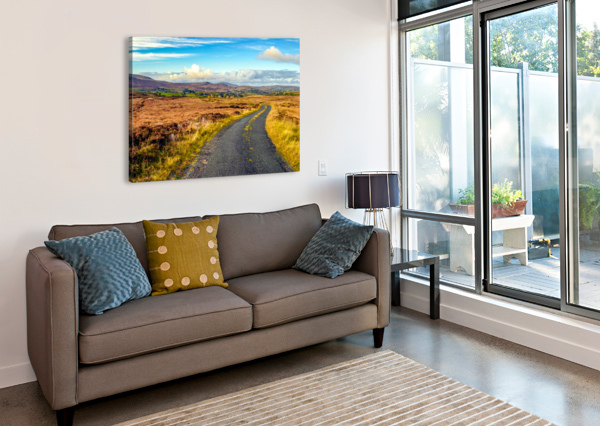 DONEGAL 11 ERIC FRANKS PHOTOGRAPHY  Canvas Print