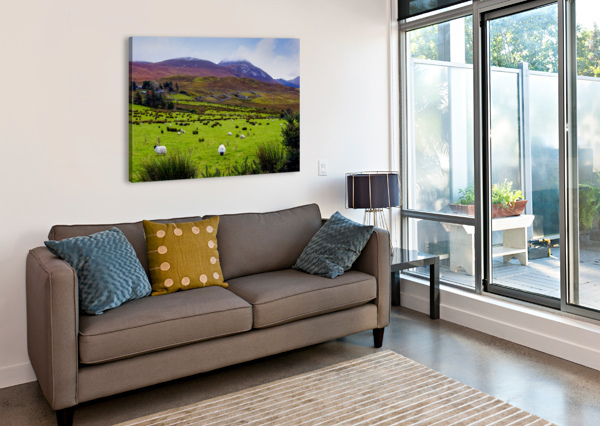 DONEGAL 10 ERIC FRANKS PHOTOGRAPHY  Canvas Print