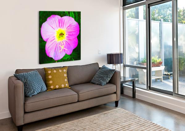 LADY BUG FLOWER PIERCE ANDERSON  Canvas Print