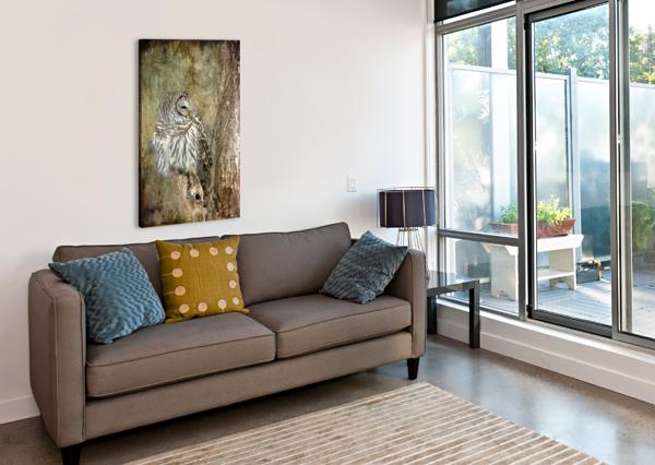 GRUNGY OWL MICHEL SOUCY  Canvas Print