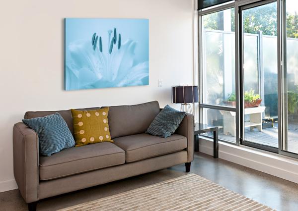 BLUE LILY MICHEL SOUCY  Canvas Print