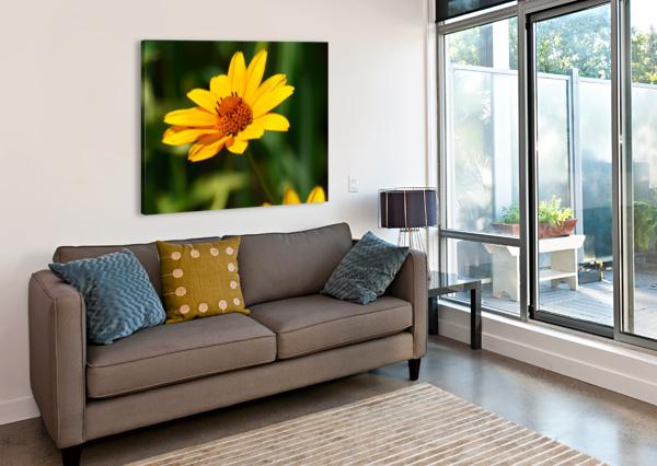 SUNNY SIDE J  JASMYN PHILLIPS  Canvas Print
