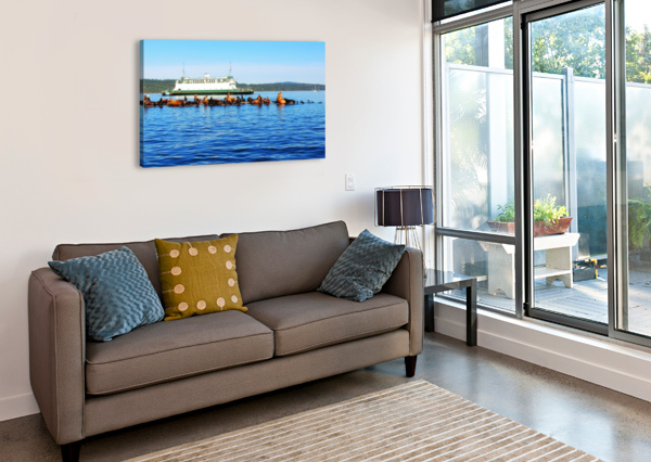SEA LIONS HANGING OUT J  JASMYN PHILLIPS  Canvas Print
