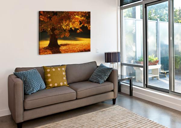 LANDSCAPE_2_0386 STOCK PHOTOGRAPHY  Canvas Print