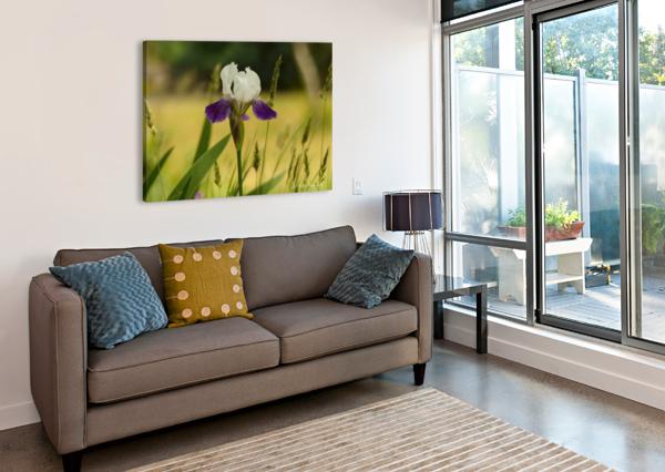 IRIS DOLL J  JASMYN PHILLIPS  Canvas Print