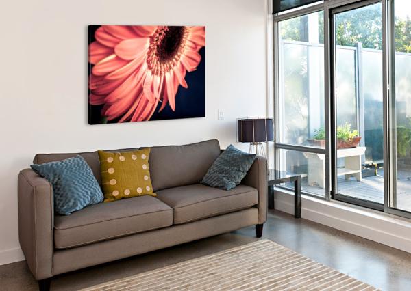 GERBERA FLOWER BACKGROUND LEVENTE BODO  Canvas Print