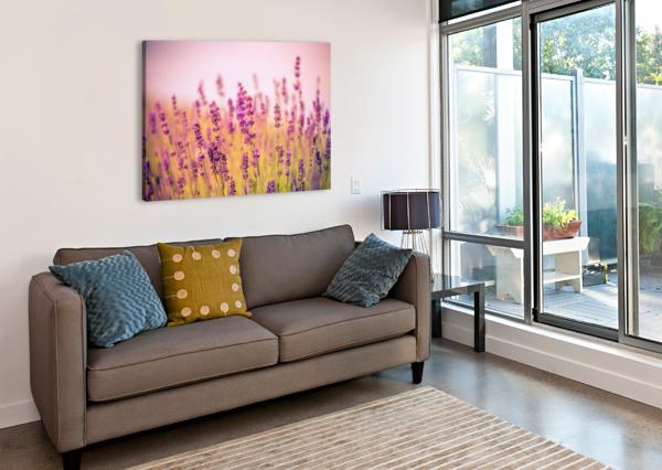 BEAUTIFUL SUNSET LAVENDER FLOWERS LEVENTE BODO  Canvas Print