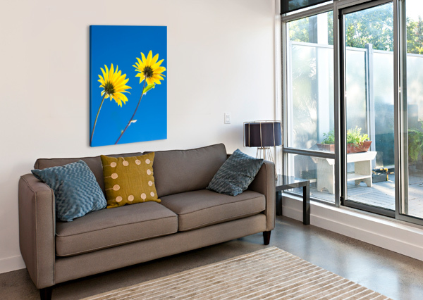 YELLOW FLOWERS AND BLUE SKY LEVENTE BODO  Canvas Print