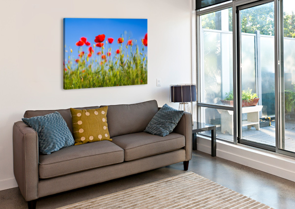 BEAUTIFUL SUNSET POPPY FLOWERS LEVENTE BODO  Canvas Print