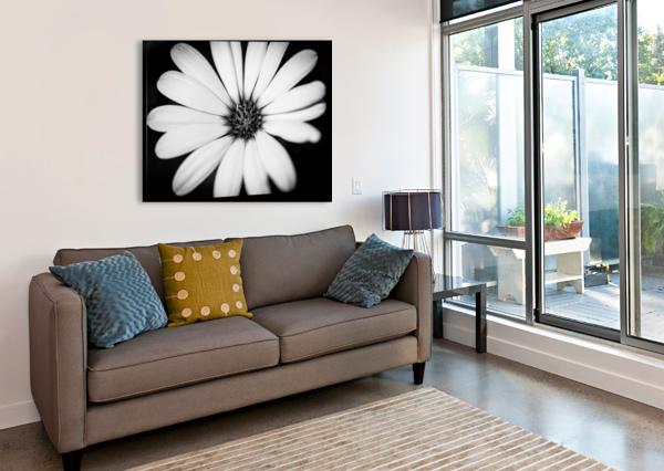 BEAUTIFUL SUMMER BACKGROUND LEVENTE BODO  Canvas Print
