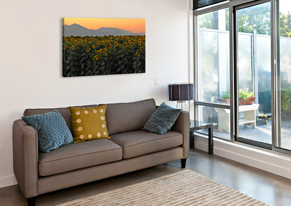 STANDING ROOM ONLY J  JASMYN PHILLIPS  Canvas Print