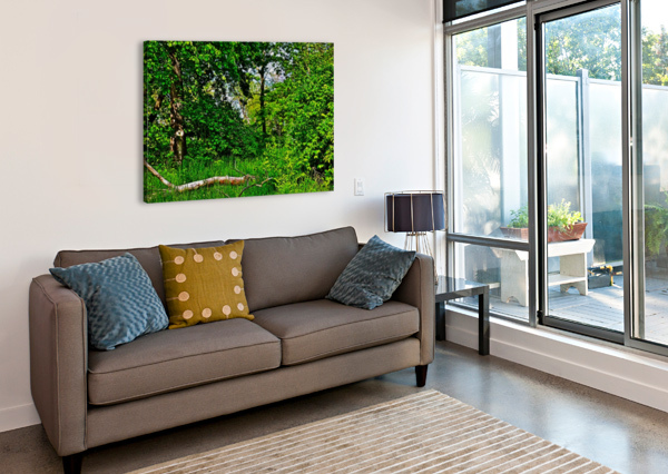 LIFE IN THE SHADOWS OF THE TREES DON  BAKER  Canvas Print