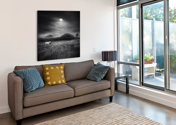 STRANGE PLACE TO BE 1X  Canvas Print