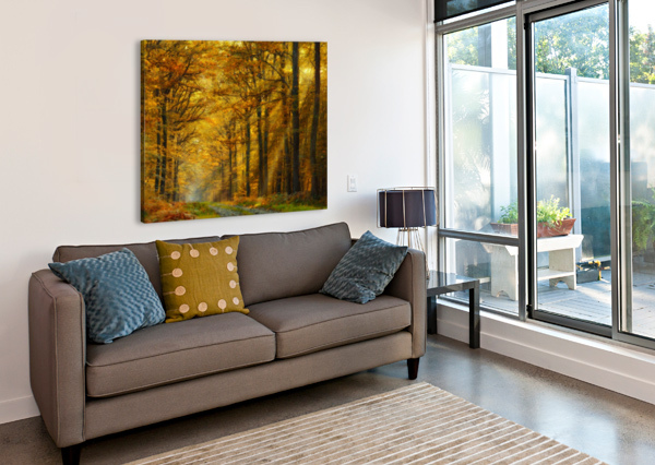 ENCHANTED FOREST 1X  Canvas Print