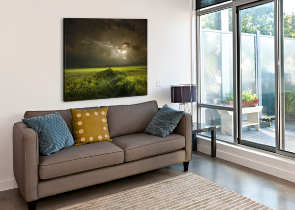 ELECTRICALLY IN SUMMER 1X  Canvas Print