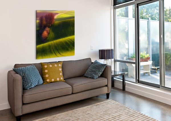GREEN FIELDS 1X  Canvas Print