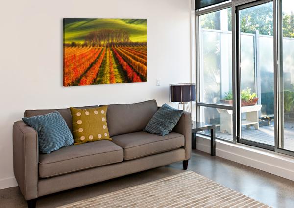 VINE-GROWING 1X  Canvas Print