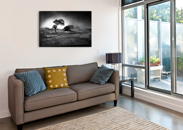 WINTER IS COMING 1X  Canvas Print