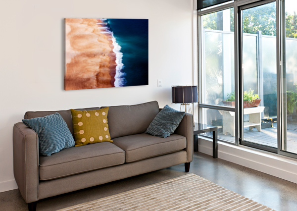 SILVER COAST 1X  Canvas Print