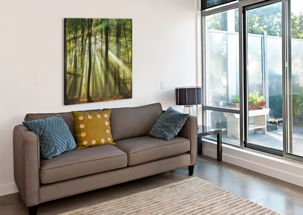 SUNNY START TO THE DAY ........ 1X  Canvas Print