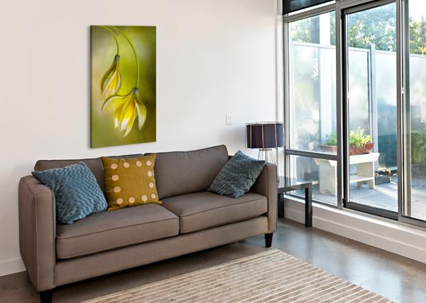 TULIPA 1X  Canvas Print