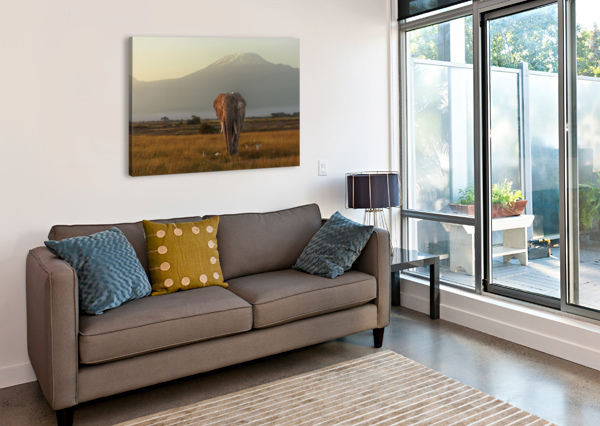 UNDER THE ROOF OF AFRICA 1X  Canvas Print