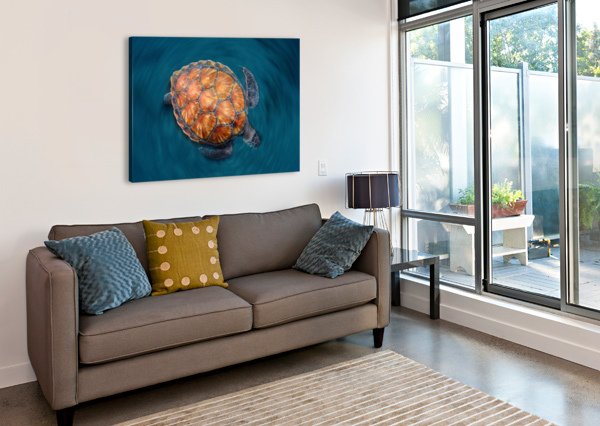 SPIN TURTLE 1X  Canvas Print