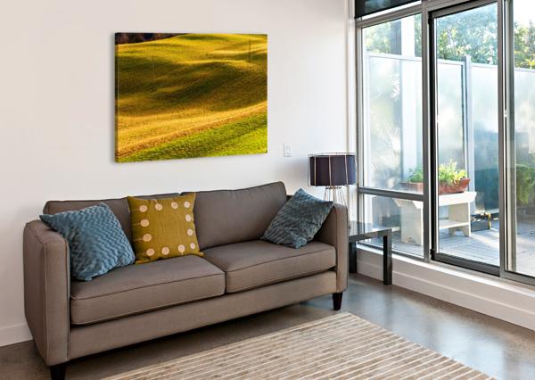 TOANO 2 ANDREA SPALLANZANI  Canvas Print