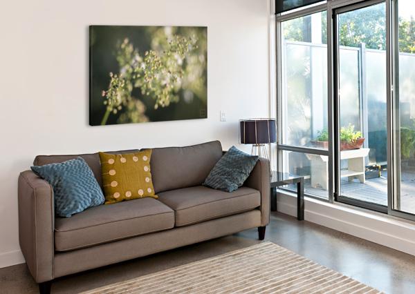 FLOWER EMILIEN GASS   Canvas Print