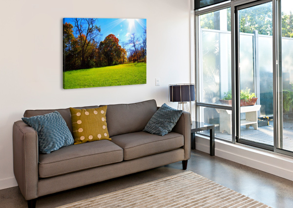 SUNNY FALL DAY DON  BAKER  Canvas Print