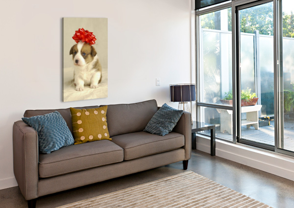 PUPPY WEARING A RED BOW PACIFICSTOCK  Canvas Print