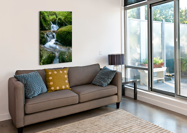SMALL WATERFALL IN THE GERMAN BLACK FOREST ANDREAS WONISCH  Canvas Print