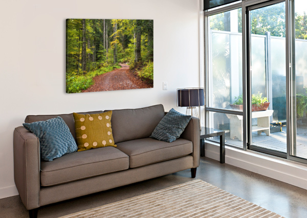 FALL FOREST ANDREAS WONISCH  Canvas Print