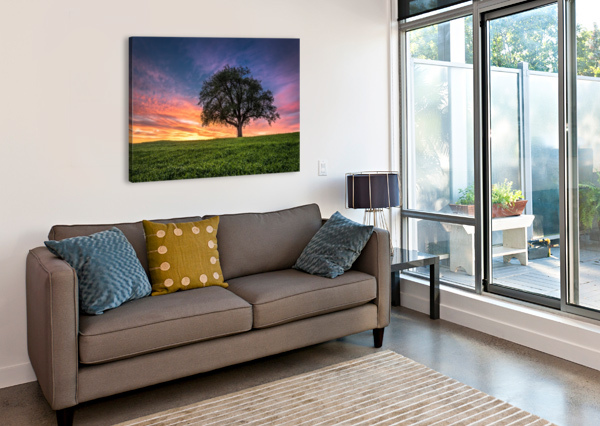 LONELY TREE AT SUNSET ANDREAS WONISCH  Canvas Print