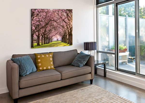 CHERRY BLOSSOM IN A PARK ANDREAS WONISCH  Canvas Print