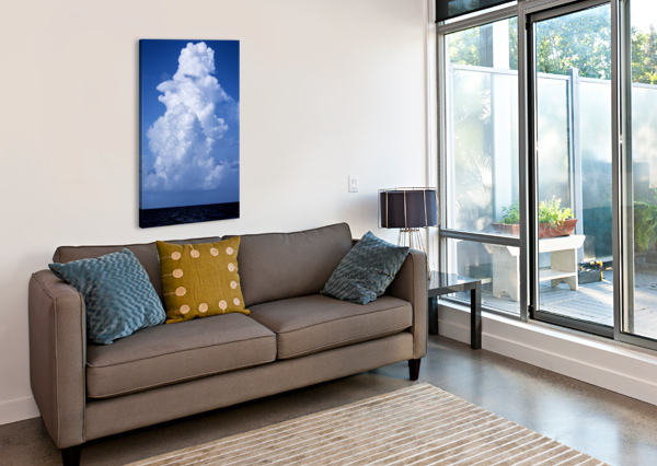BILLOWING CAMERON YOUNG  Canvas Print