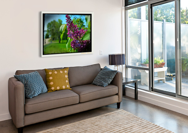 PURPLE FLOWERS CAMERON YOUNG  Impression sur toile