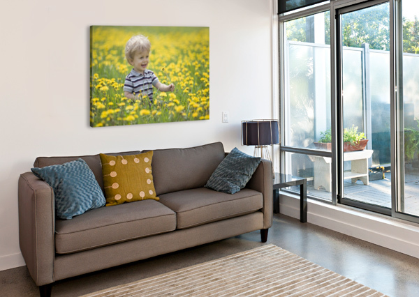 18-MONTH-OLD BOY IN DANDELION FIELD; THUNDER BAY, ONTARIO, CANADA PACIFICSTOCK  Canvas Print